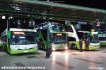 Alameda Terminal Tur Bus 01